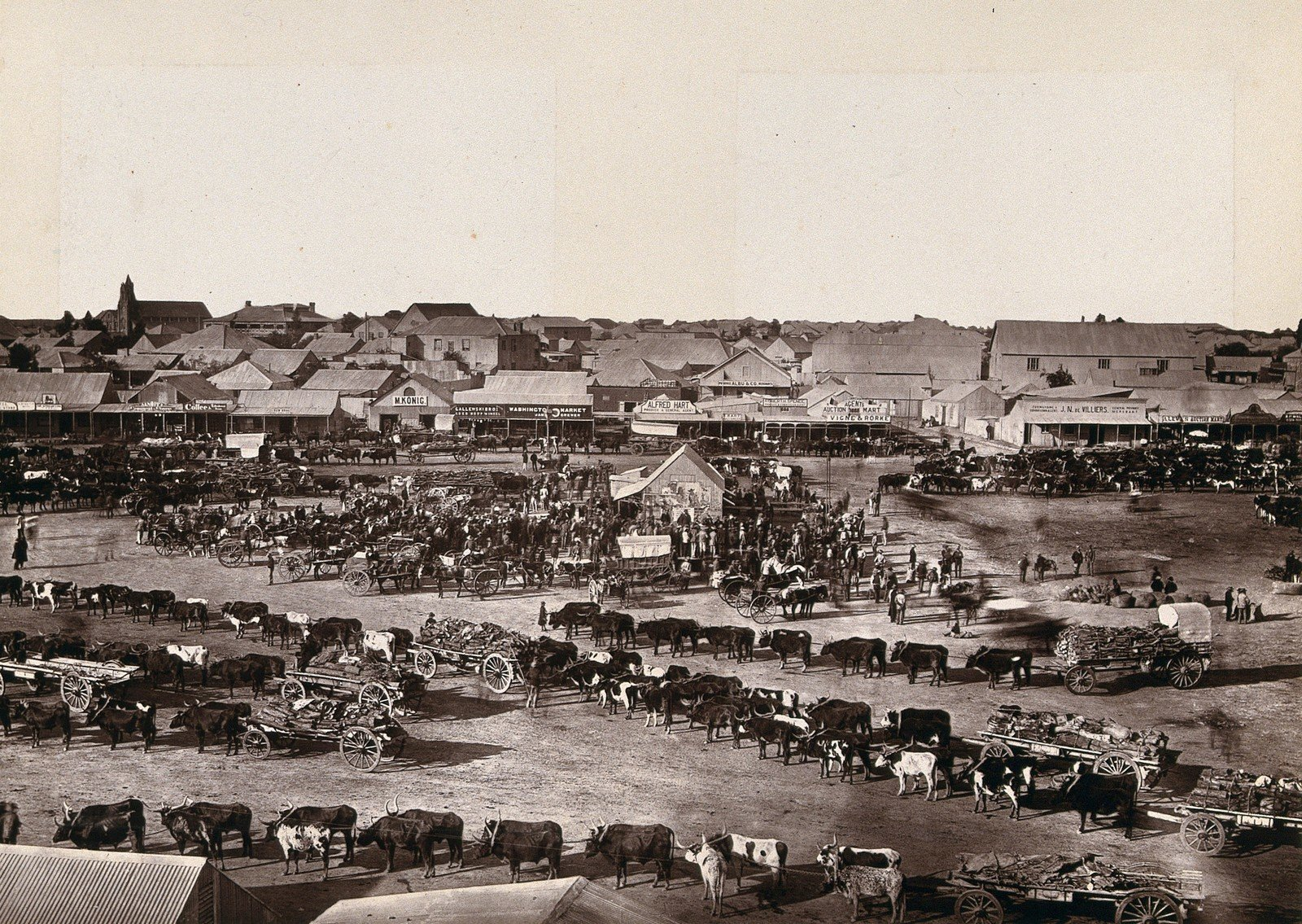 Market in Kimberley (South Africa), 1888 (Woodburytype after), Robert Harris, Wellcome Collection, CC BY