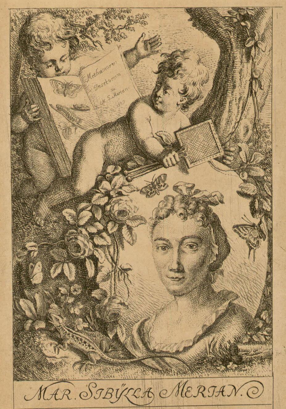 Portrait of Maria Sibÿlla Merian, Johann Rudolf Schellenburg, Bibliothèque de l'INHA, Public Domain Mark